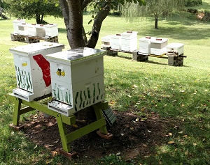 Dry Branch Apiaries, Lynchburg, VA